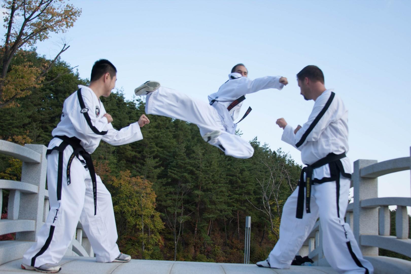 Tecumseh Taekwon-Do Tournament!